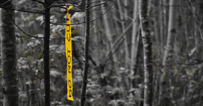 The Yellow Ribbon Project
